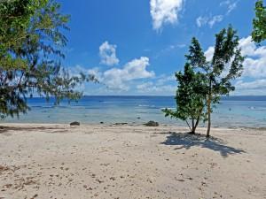 cv_beach02.JPG